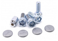 Kleeblatt Slot bolt set