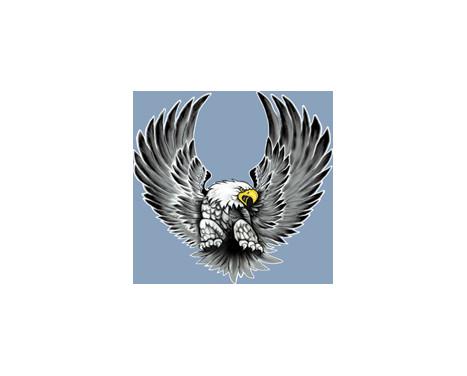Stickerset Eagles - 2x 15x14,5cm, Afbeelding 2