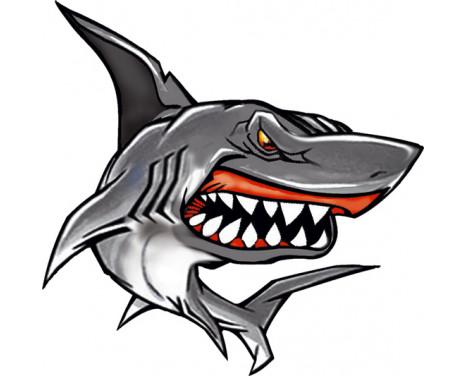Autocollant Shark II - 11x10.5 cm
