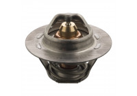 Thermostat, coolant 17694 FEBI