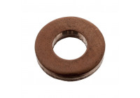 Seal Ring, injector 100543 FEBI