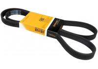 V-Ribbed Belts 6PK1560 Contitech