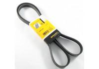V-Ribbed Belts 6PK1733 Contitech