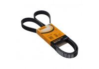 V-Ribbed Belts 6PK1538 Contitech