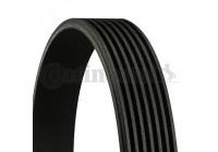 V-Ribbed Belts 7PK1035 Contitech