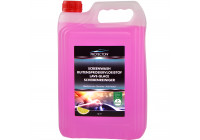 Protecton Screen wash Ready Mixed 5L (Summer)