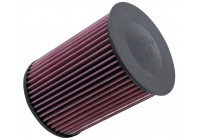 K&N vervangingsfilter Ford C-Max/Ford Escape, Focus, Grand C-max, Kuga, Tourneo Connect/Lincoln MKC, E-2993