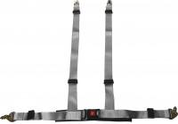 Racing Sportgordel 4-Punts Zilver + E-keur (2-inch)