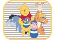 Disney zonnescherm Pooh Story of Hunny 2 stuks
