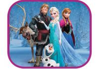 Zonnescherm Frozen family