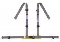 Sparco 4-Point Sports Belt - Silver - inkl Bäcken Protector & Skruvmontering (E-Mark).