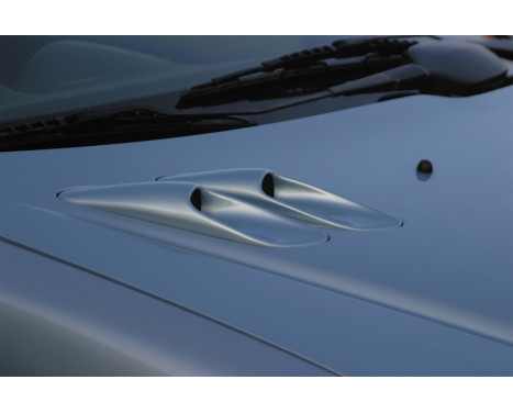 RGM Hood luftintag Peugeot 206 (ersätter den Orginal)