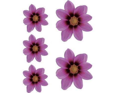 Klisterm�rke Flower Garden - rosa - 2x + 3x 16x15cm 8,5x8cm