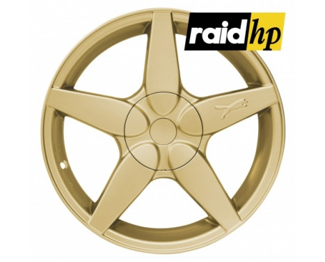 Raid HP flytande sprayfilm - guldmetallisk - 400 ml