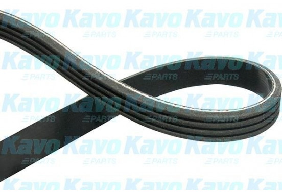 Multiriem DMV-2036 Kavo parts